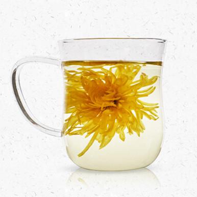 修水金丝皇菊 | 看花在杯子里盛开
