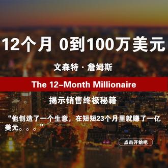 文森特·詹姆斯《12个月从0到100万》【虚拟商品;非实物书籍】【电子