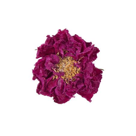 平阴初露玫瑰花冠茶 | 大朵花冠富含精油-6