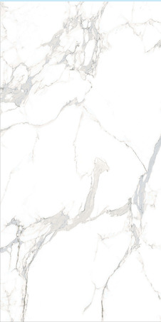 Y18933RP1-2