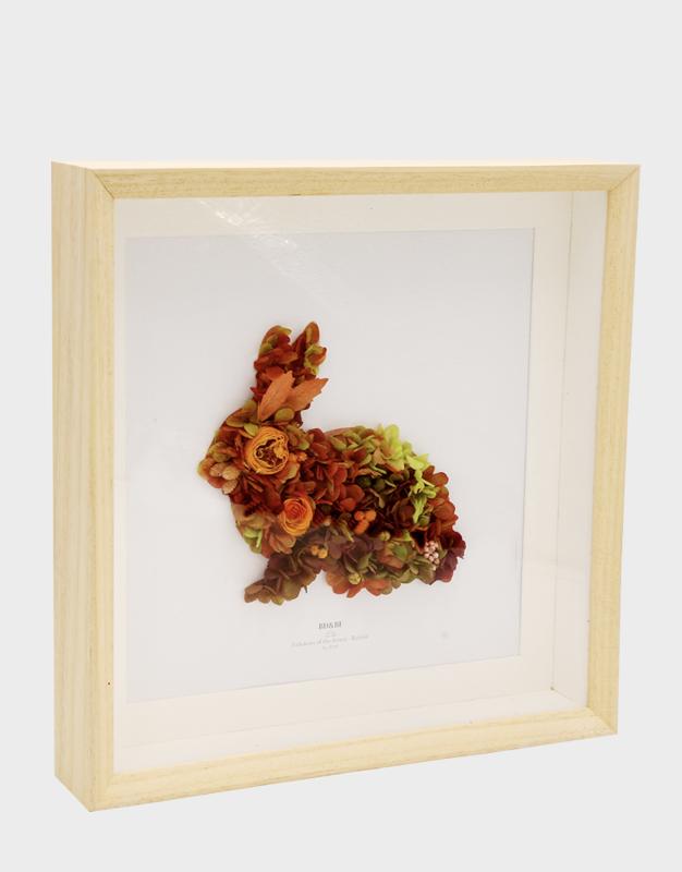 森林精灵-萌萌兔
