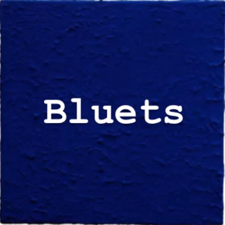 New Arrivals - Bluets